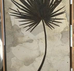 古代ヤシの葉の化石ボード