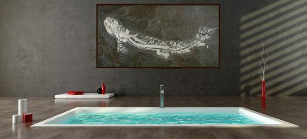 コンクリートの床のバスルームと古代サメの化石