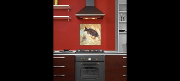 古代エイと古代魚の化石のあるキッチン